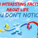 Interesting facts about life