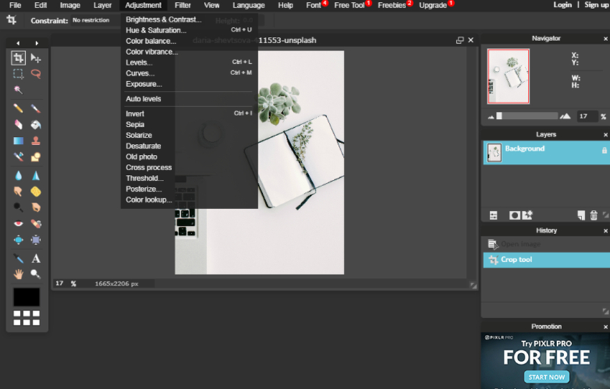 How to create stunning pictures with Online Pixlr Editor