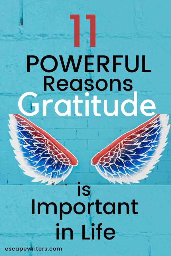pin image for importance of gratitude in life